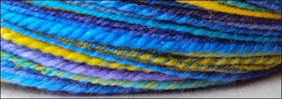 Sereknitty - Blue Tang