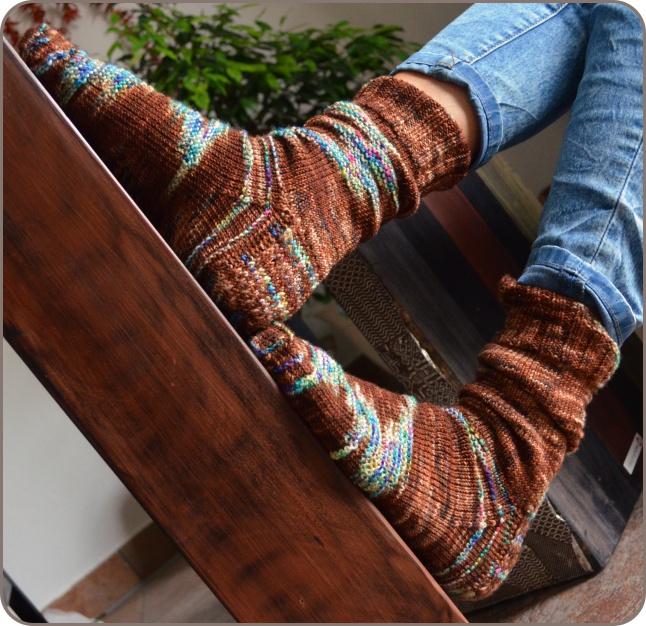 silly-socks-brownie-1