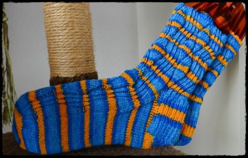 yarntini-blau-gelb-a